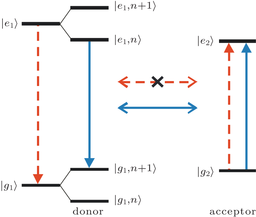 Phonon assisted excitation energy transfer in photosynthetic systems the red dashed arrow lines represent the original detuned energy transfer process which hardly succeed due to the mismatched energy levels ccuart Gallery