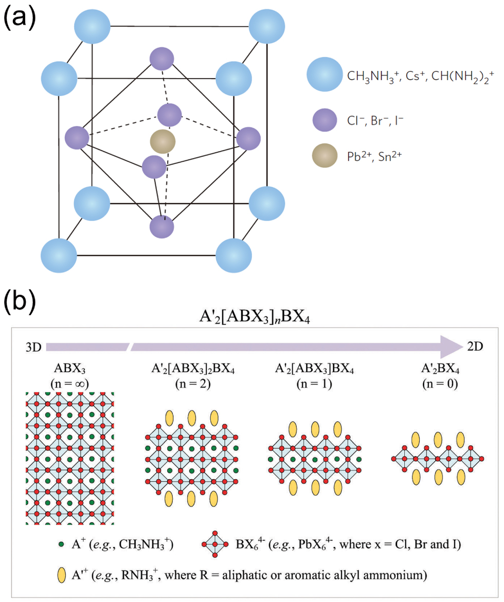 Metal halide perovskite photodetectors  Material features and device ... 23fffc81fa